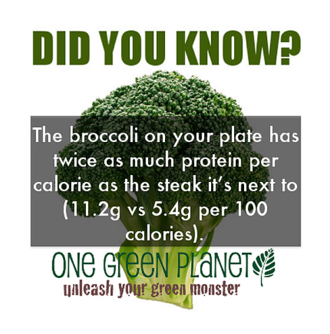 Did You Know The Broccoli On Your