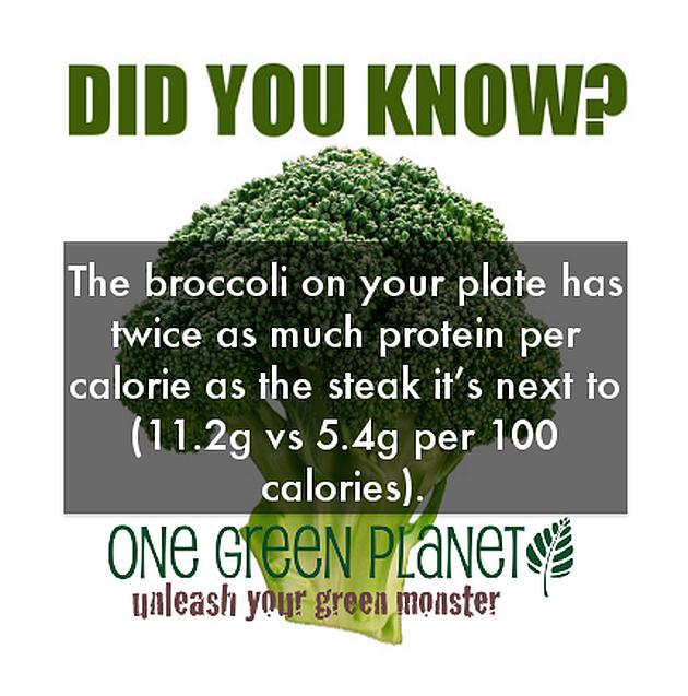 Broccoli: Twice The Protein, None Of The Cholesterol