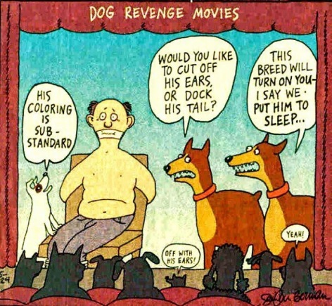 Dog Revenge Movies His Coloring Is Substandard