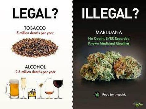 Legal Illegal Tobacco, Alcohol, Marijuana