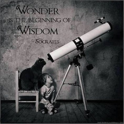Socrates Wonder Is The Beginning Of Wisdom