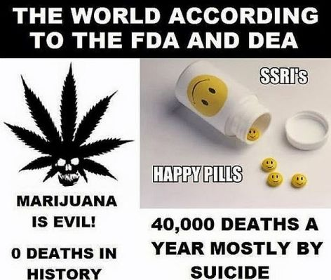 The World According To The FDA And DEA