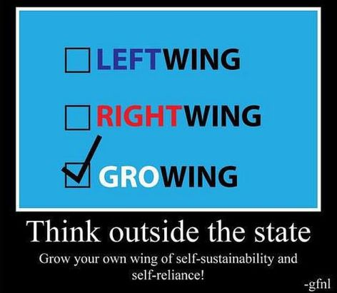Think Outside The State Grow Your Own Wing