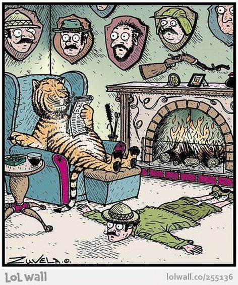 Tiger Relaxing In His Home Full Of Human Trophy Heads And A Man Skin Rug