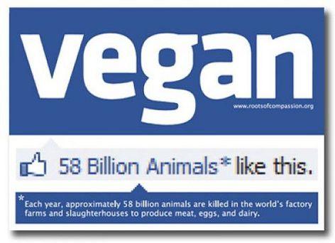 Vegan Facebook 58 Billion Animals Like This