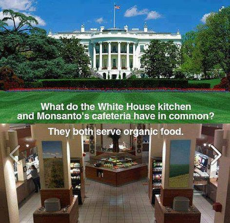 What Do The White House Kitchen And