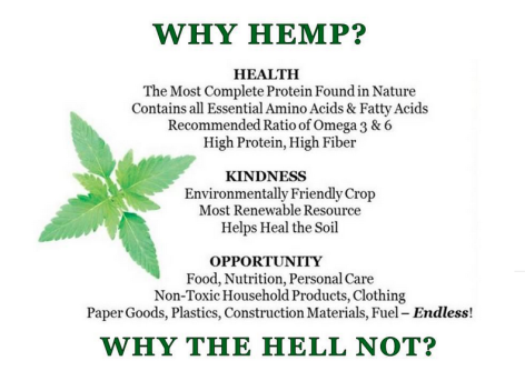 Why Hemp Why The Hell Not