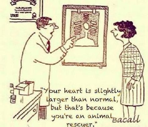 Your Heart Is Slightly Larger Than