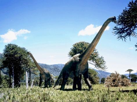 Brachiosaurus Vegan
