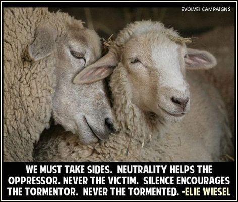 Elie Wiesel We Must Take Sides Neutrality