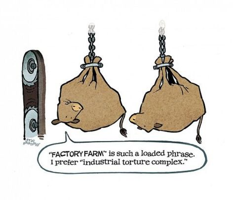 Factory Farm Is Such A Loaded Phrase I Prefer Industrial Torture Complex