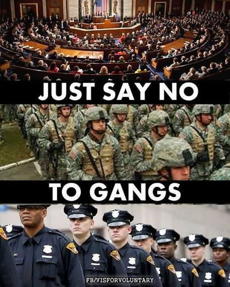 Just Say No To Gangs