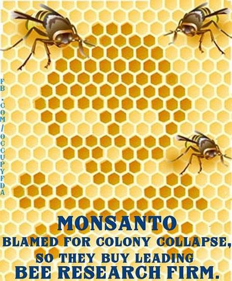 Monsanto Blamed For Colony Collapse So They Buy Leading Bee Research Firm