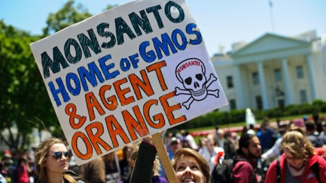 US-AGRICULTURE-GMO-MONSANTO-PROTEST