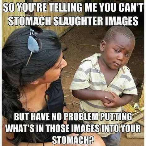 So You're Telling Me You Can't Stomach Slaughter Images