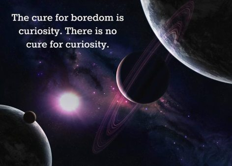 The Cure For Boredom Is Curiosity There Is No Cure For Curiosity