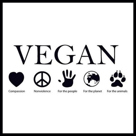 Vegan Compassion Nonviolence For The People For The Planet For The Animals