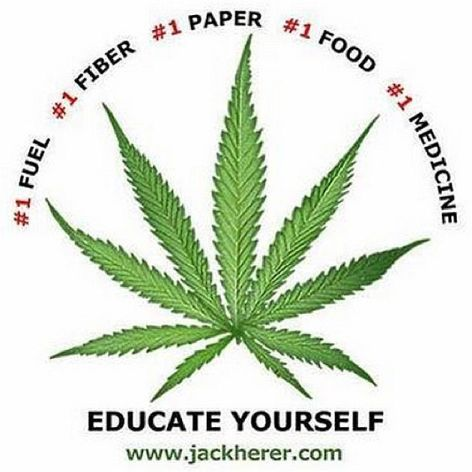 Fuel, Fiber, Paper, Food, Medicine, Educate Yourself