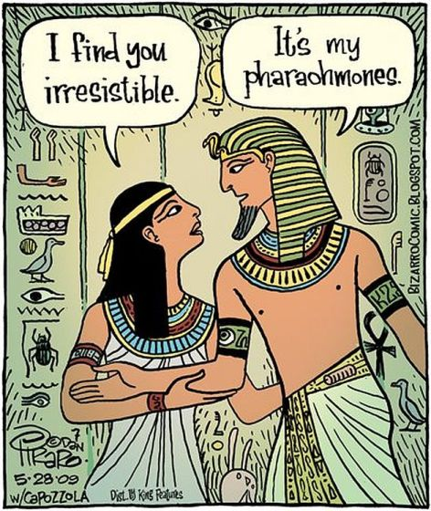 I Find You Irresistible It's My Pharaohmones