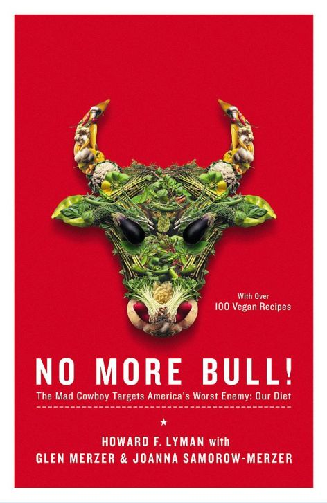 No More Bull Book Cover