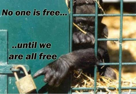 No One Is Free Until We Are All Free