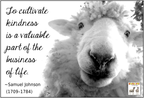 Samuel Johnson To Cultivate Kindness Is A Valuable Part Of The Business Of Life