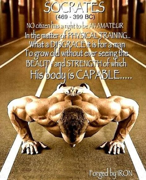 Socrates No Citizen Has A Right To Be An Amateur In The Matter Of Physical Training