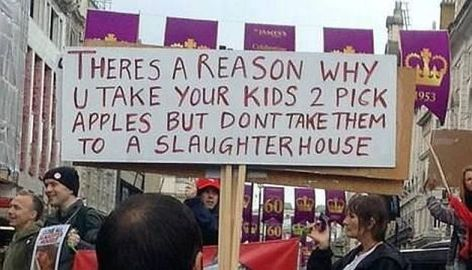 There's A Reason Why You Take Your Kids To Pick Apples But Don't Take Them To A Slaughter House