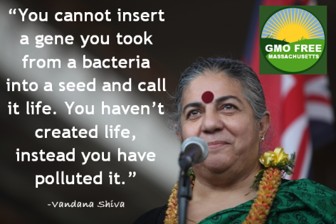Vandana Shiva You Cannot Insert A
