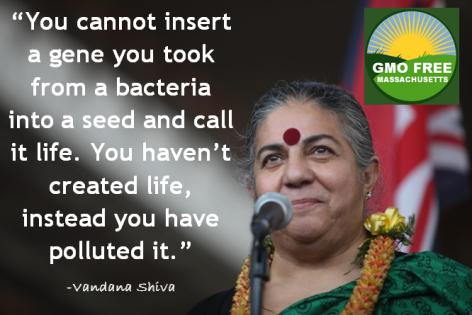 Vandana Shiva You Cannot Insert A