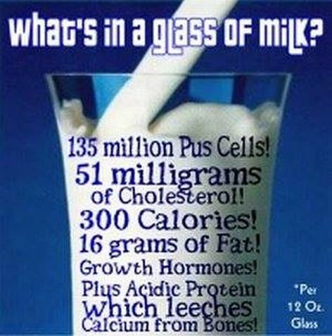 What's In A Glass Of Milk Per 12 Oz Glass