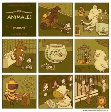 Animales what if the tables were turned