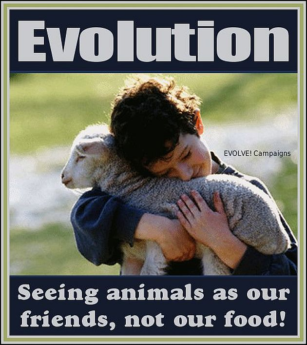 Animals are our friends