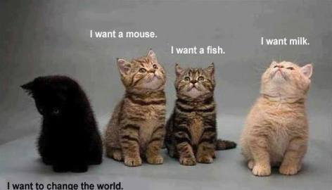 I want a mouse, fish, milk,to change the world