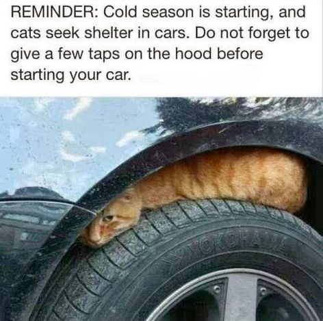 Reminder Cold Season Is Starting And
