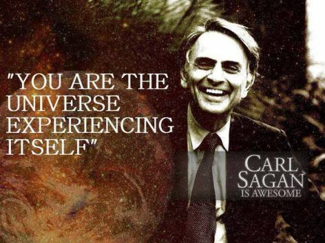 Carl Sagan you are the universe experiencing