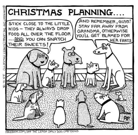 Christmas planning stick close to