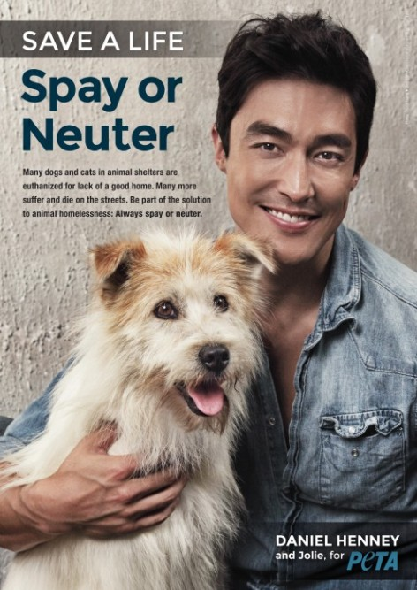 Daniel-Henney-Spay-and-Neuter