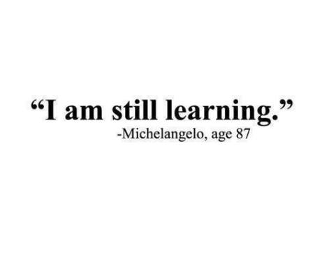 Michelangelo I am still learning age