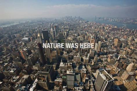 nature was here