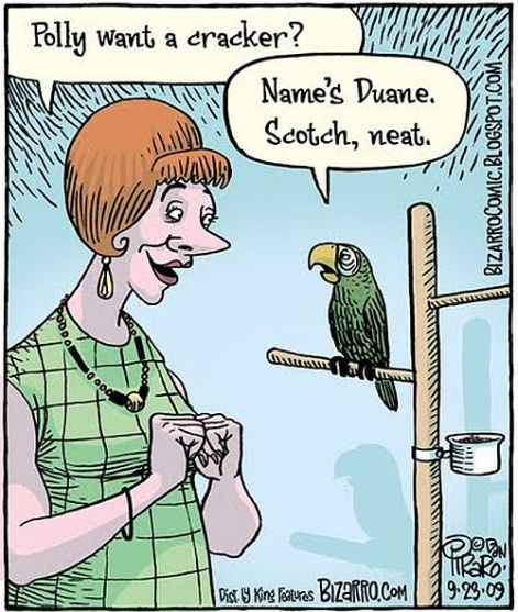 Polly want a cracker name's Duane Scotch neat