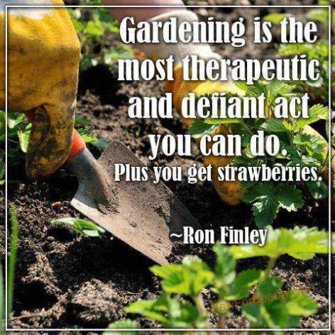 Ron Finley gardening is the most therapeutic