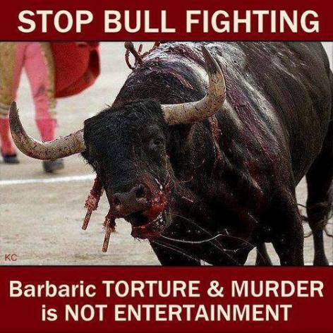 stop bull fighting barbaric torture