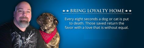 bring loyalty home every eight seconds