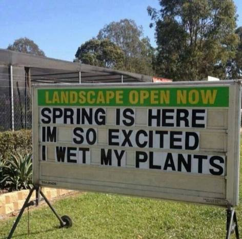 Spring is here I'm so excited I wet my plants