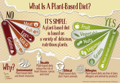 What is a plant-based diet
